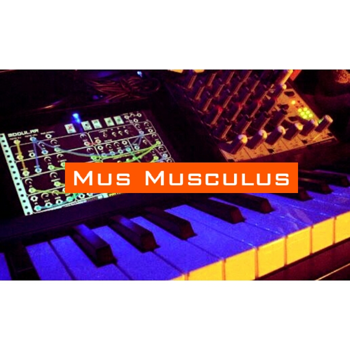 Mus Musculus's picture